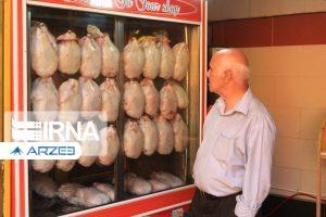 اتحادیه مرغداران: قیمت مرغ همچنان رو به کاهش است