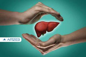 درمان آسان بیماری خطرناک کبد چرب با طب سنتی