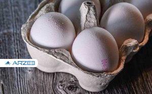 علت گرانی تخم مرغ در روزهای اخیر مشخص شد