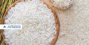 ممنوعیت واردات برنج برداشته شد؛ 200 هزار تن در صف تخصیص ارز