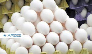 نامه مرغداران به وزیر: از فروش هرشانه تخم مرغ ۳۰ درصد ضرر میکنیم
