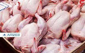 آیا قیمت مرغ دوباره پرواز میکند؟