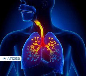 محافظت از ریهها و سیستم تنفسی در مقابل بیماریهای کشنده